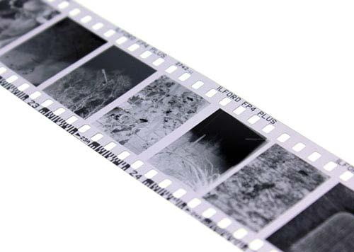 Half-Frame-Image01_sml